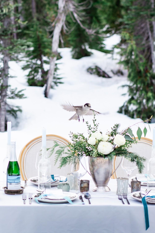 Vancouver Island Nature wedding