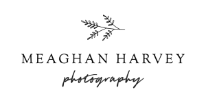 logo_01_black small